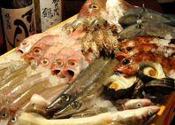 毎日旬の鮮魚を入荷!!