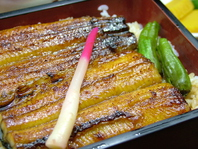 鰻と鮨の店、たらふくの鰻は格別。丑の日以外にもぜひ