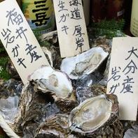 今が旬♪岩牡蠣食べ比べ!