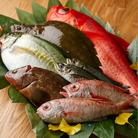 旬の新鮮な魚を仕入れ、和食らしさを際立させる