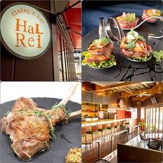 dining&bar HaLRei ダイニング&バー ハルレイの写真