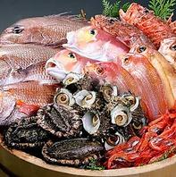 市場直送!新鮮魚介☆豪華お刺身3種盛り、5種盛りが人気