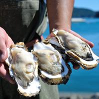 信頼する漁師さんから届く海鮮食材。