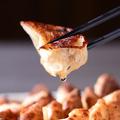 料理メニュー写真焼き餃子 5個
