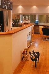 ドッグカフェ プッチーニの写真