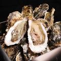 料理メニュー写真【石巻産牡蠣】のガンガン焼き!(1個)