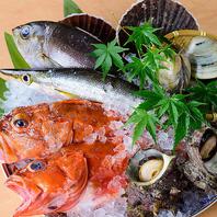◇◆九州の海の幸に舌鼓♪毎日入荷の鮮魚◆◇
