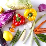 みずみずしい新鮮な野菜♪