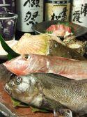 甕仙人 横浜関内蔵のおすすめ料理3
