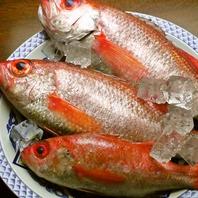 山陰代表の魚のひとつ「のどぐろ」