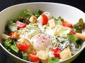 料理メニュー写真シーザーサラダ / 豚しゃぶサラダ