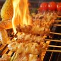 料理メニュー写真串焼5種