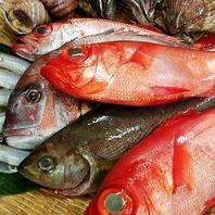 【素材のこだわり】獲れたての新鮮な海鮮を日替わりで