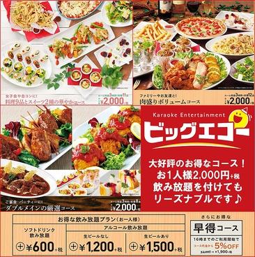 ビッグエコー BIG ECHO 高崎問屋町店のおすすめ料理1