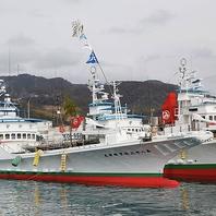 かつお一本釣り漁船【佐賀 明神丸】で釣り上げた鰹