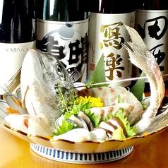 鮮魚 地酒 肴 魚晴の特集写真