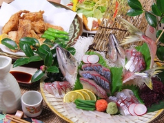 ふぐ海鮮dining 343屋 さしみや特集写真1