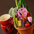 料理メニュー写真農園野菜のバーニャカウダ