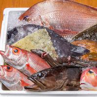 銀座一丁目駅3分◆豊洲・五島列島・天草からの直送鮮魚