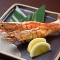 料理メニュー写真活 車海老の炙り(2尾)