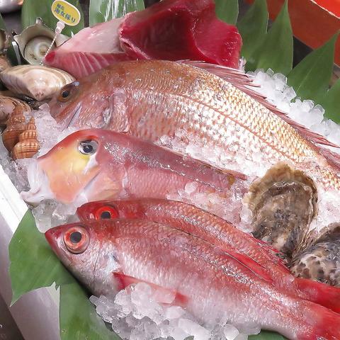 東京市場以外にも加賀・能登や八丈島から直送の旬の地魚や野菜等を心をこめて調理する