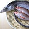 魚と酒 宍くら 茅場町のおすすめポイント1