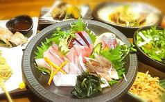 健康居酒屋 しぞ~か 魚to畑 駅南銀座店の特集写真