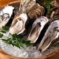 料理メニュー写真本日の特選牡蠣