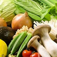 体内環境を整え、カラダの中からきれいになれる国産野菜