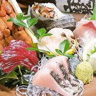 漁師から仕入れる鮮度抜群の海鮮をお召し上がり頂ける!