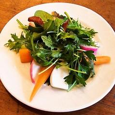 料理メニュー写真シンプルミックスサラダ