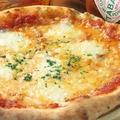 料理メニュー写真定番のマルゲリータピザ