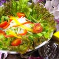 料理メニュー写真韓国・ねぎ塩チョレギサラダ