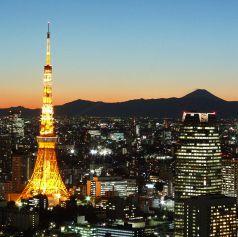 やっぱり東京タワーが好き。