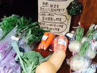 無農薬有機野菜