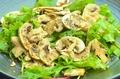 料理メニュー写真(富士市長谷川農産!)高品質マッシュルームと静岡県産葉野菜のサラダ