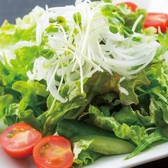 料理メニュー写真とりとんサラダ【塩ペッパー/シーザー/胡麻焙煎】