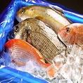 職人が毎日目利きして仕入れる鮮度バツグンの鮮魚。今が旬・今が一番美味しい魚だけを仕入れていますのでどれを食べても身はプリッと引き締まり程よい脂が乗っていてまさに日本酒の肴にうってつけ。生魚が苦手な方には調理をしてからのご提供も承りますのでご相談下さい☆※写真はイメージ