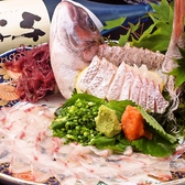 【長浜直送鮮魚】前日までのご要望でお好きなネタをご用意!