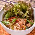 料理メニュー写真ベトナム牛肉汁麺 ~ビーフのフォー~