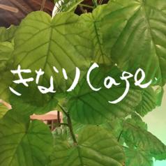 きなりCafeのコース写真