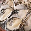 料理メニュー写真活〆牡蠣