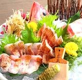 美・食・同・源 天空の月 新潟のおすすめ料理2