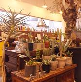 シャルマ 野々市店の雰囲気3