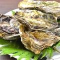 料理メニュー写真大島産岩牡蠣
