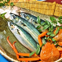 瀬戸内の【走島】直送の新鮮魚貝・その2