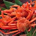 料理メニュー写真ゆで紅ずわい蟹