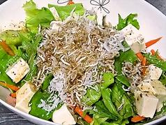 料理メニュー写真豆腐とじゃこの和風サラダ