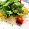 料理メニュー写真真鯛のカルパッチョ カラスミ添え