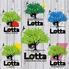 Cafe&Bar Lotta カフェ&バー ロッタのロゴ